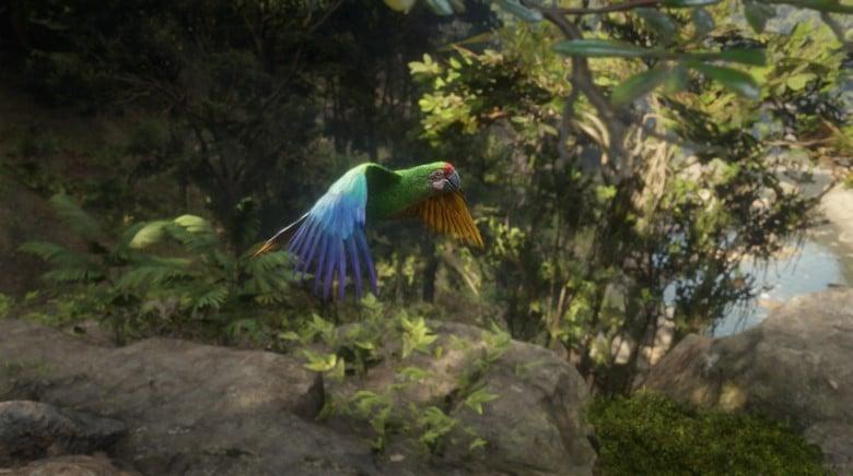 game photography rdr2 bird-2