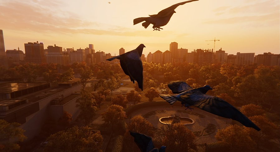 Pigeons, seen here in Spider-Man PS4